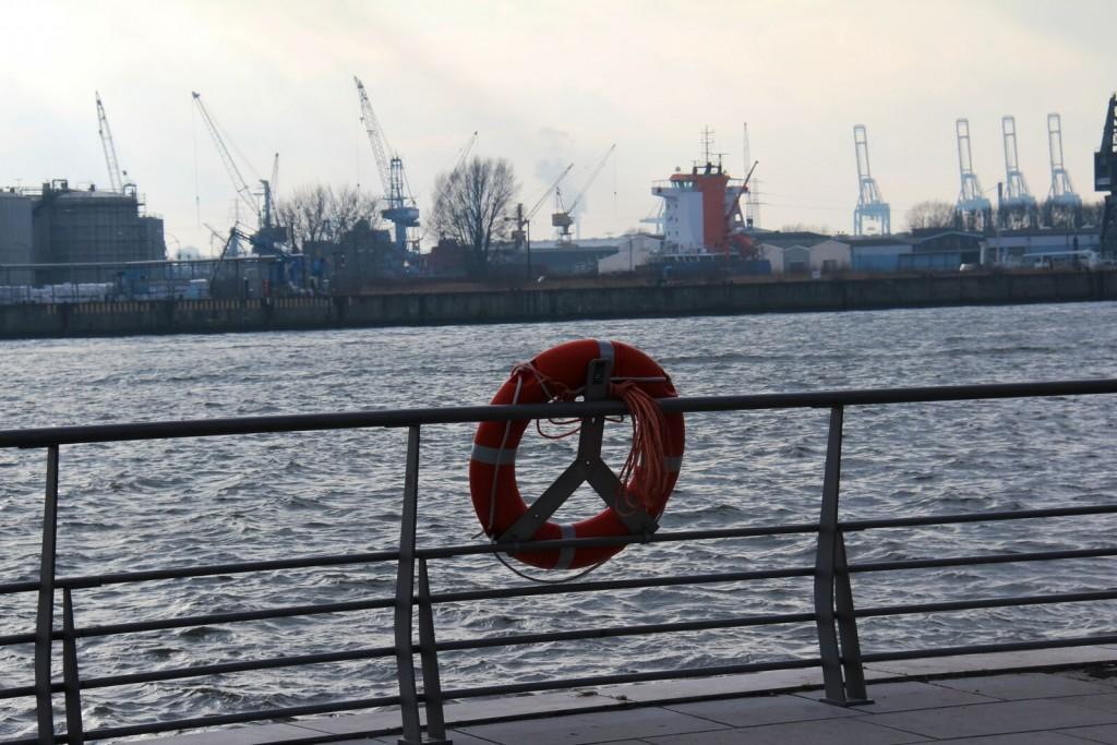 So schön und so informativ ist der Hafen im Herbst...